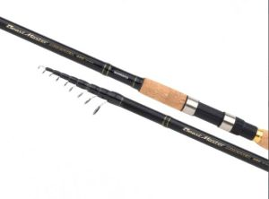 CANNA INGLESE SHIMANO MONSTER BEASTMASTER 4,20-100